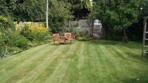 Garden maintenance lawn mowing, hedges